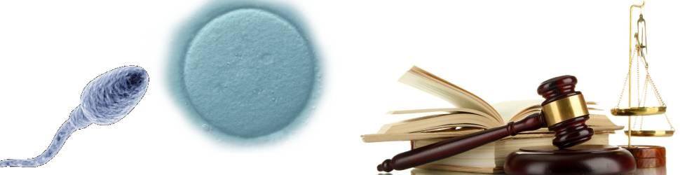 Dadores de esperma legislação